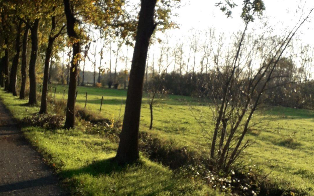 Red dit waardevolle landschap te Liezele